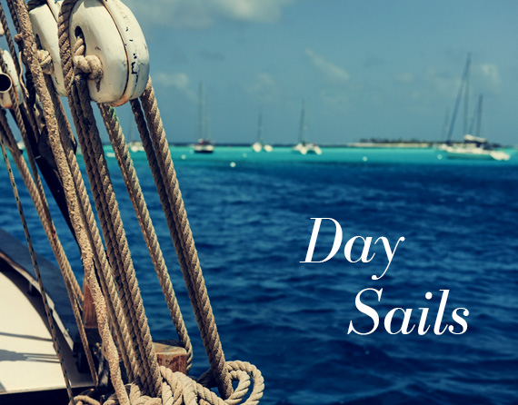 daily-sails_3_2